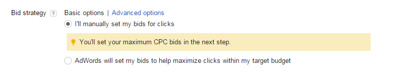 AdWords bidding options