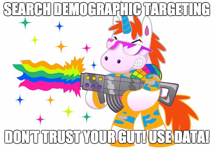 demographic targeting for search