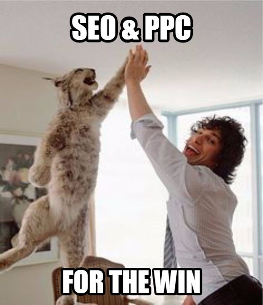 Does Google AdWords work? GIF saying SEO & PPC for the win