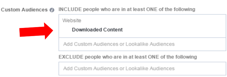 facebook nurture custom audiences