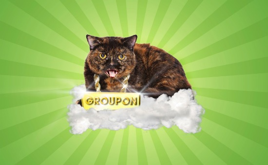 Groupon Cat