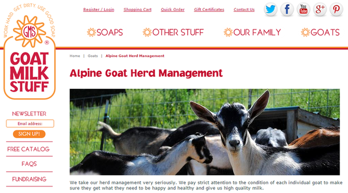 Is email marketing effective goats