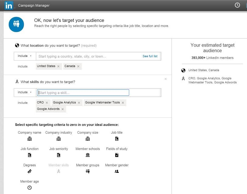 LinkedIn Ads Campaign Management tool audience targeting