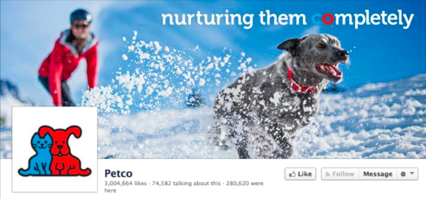 PetCo Winter Cover Photo on Facebook