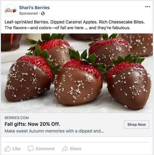 Facebook ad transparency ecommerce strategy Shari's Berries ad