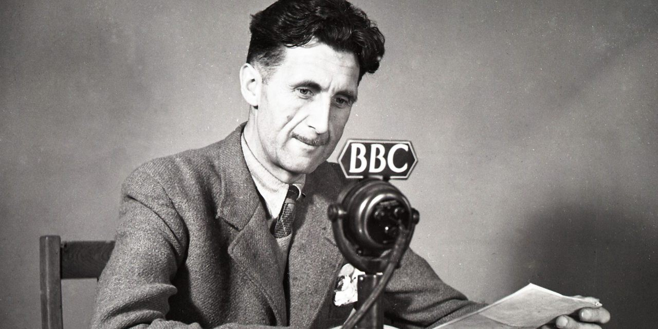 google-search-statistics-orwell-radio-segment