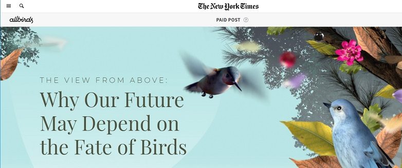 interactive content example: Allbird NYT paid post