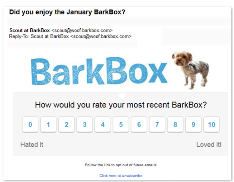 newsletter-ideas-to-grow-your-business-barkbox