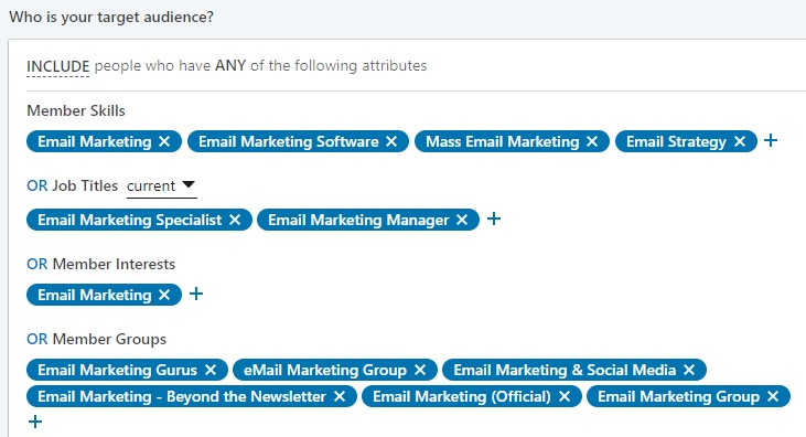 target audience example on LinkedIn
