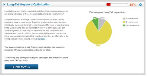 AdWords Analytics Tool