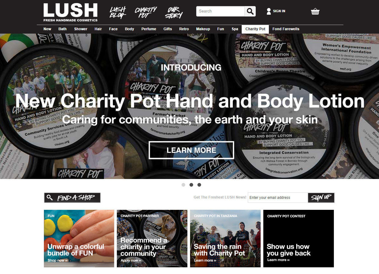 Beginner's guide to target markets Lush cosmetics homepage