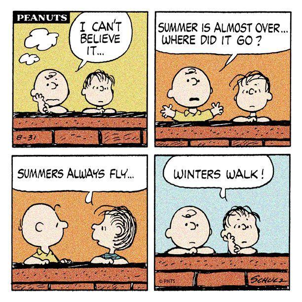 WordStream best posts of August Peanuts strip