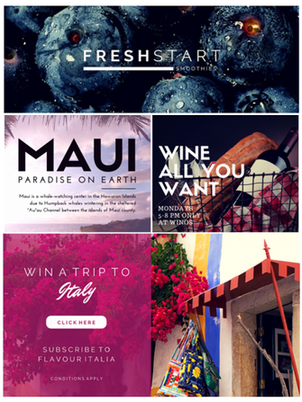 canva examples