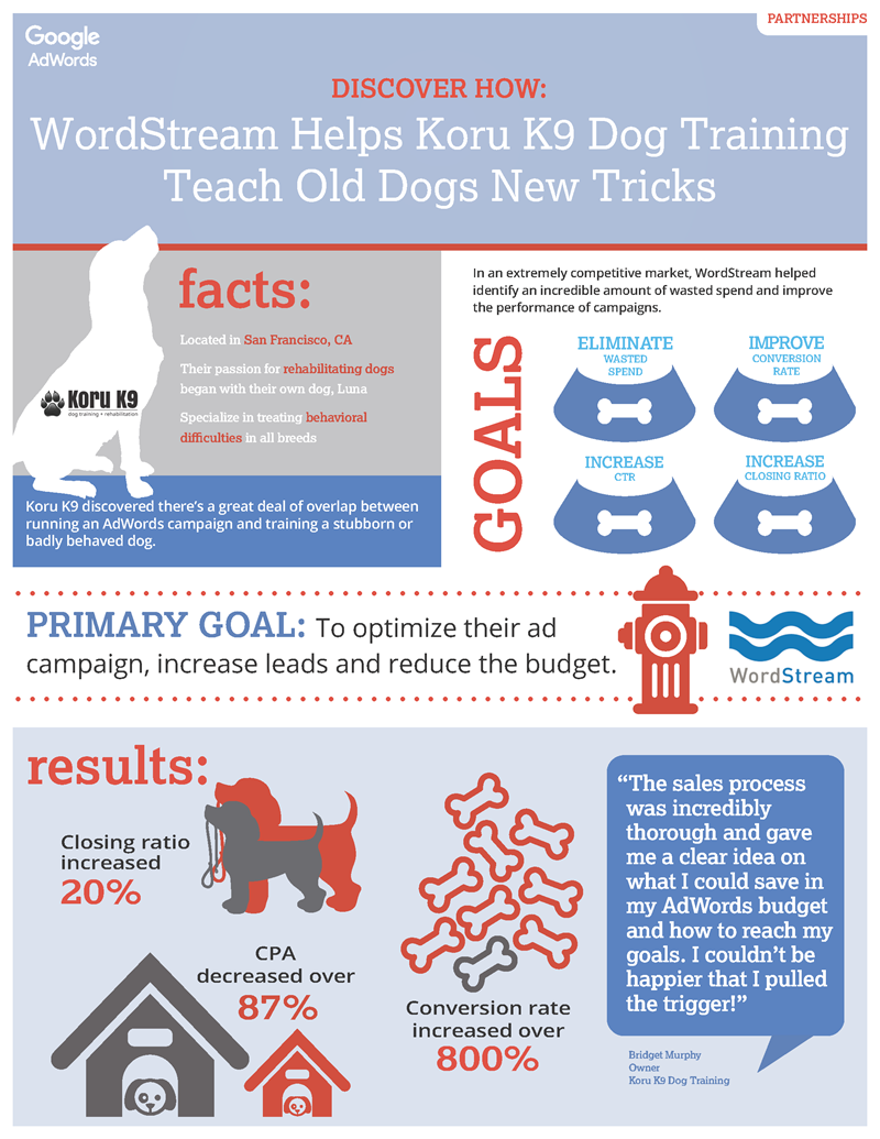 How to write a case study infographic