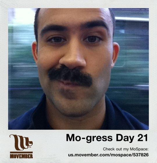 Cause-based marketing Movember progress pictures social media