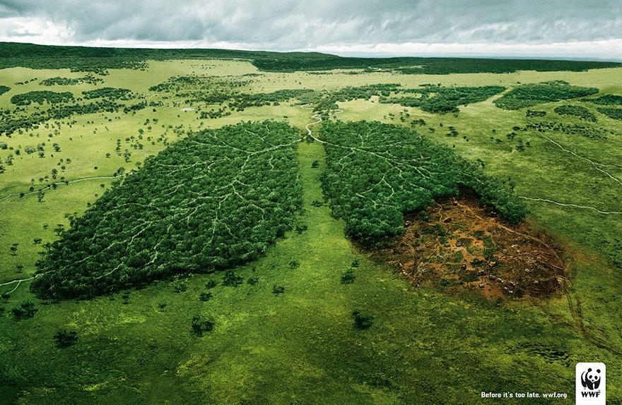 Cause-based marketing WWF Amazon deforestation campaign