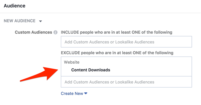 custom audience in facebook based on content download
