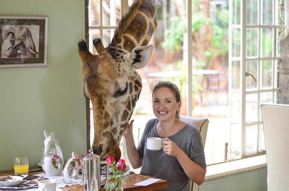 Go2Africa Customer Spotlight Carlien Parsons