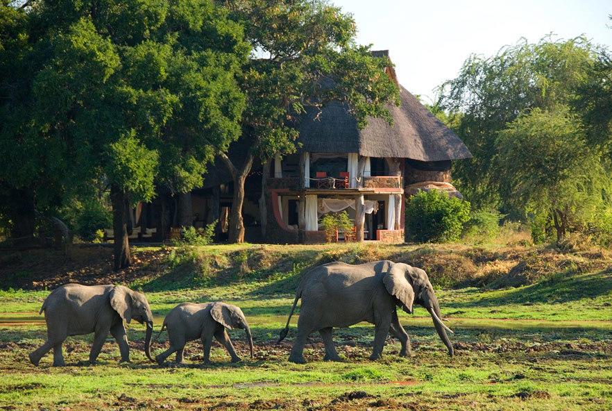 Go2Africa Customer Spotlight safari hotel