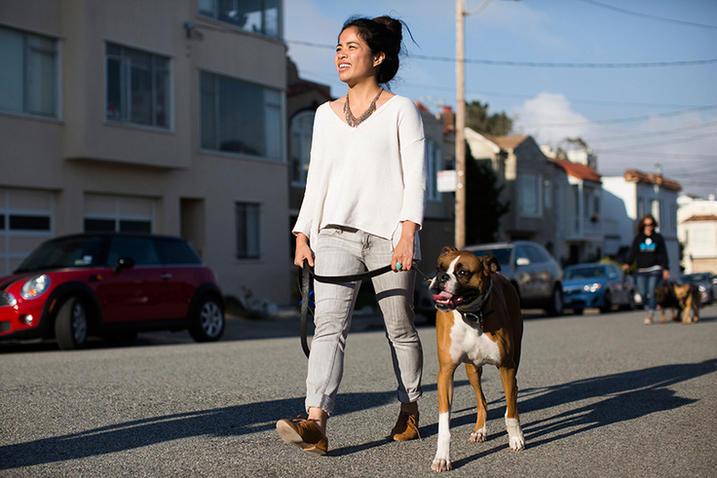 Customer Spotlight Koru K9 Dog Training and Rehabilitation