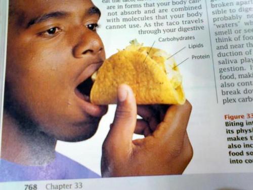 wrong tacos
