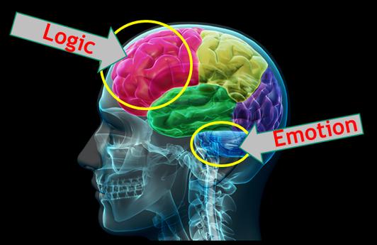 Emotional ads logic vs emotion
