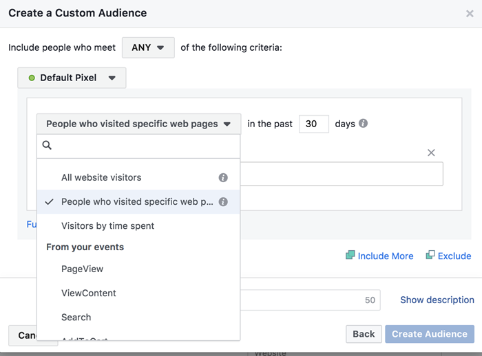 facebook ads custom audience people who visit from specific pages