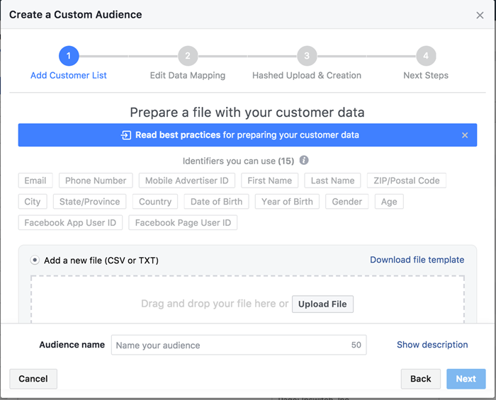facebook custom audiences csv file fields