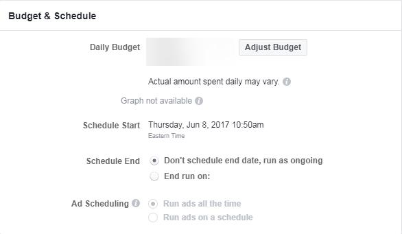 facebook ads review budget screencap