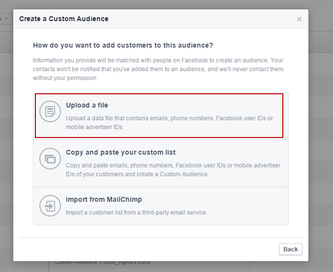 Facebook advertising cost import audience