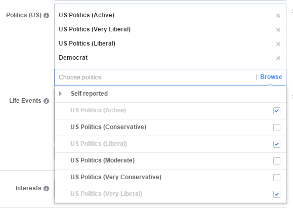 Facebook audience example of targeting political affiliations