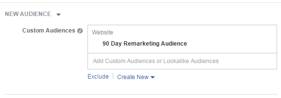 Facebook conversion tracking 90-day remarketing audience