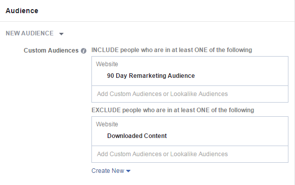 Facebook conversion tracking exclude content download audience