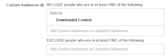Facebook conversion tracking nurture funnel custom audience