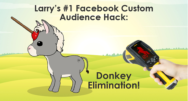 facebook audience strategies