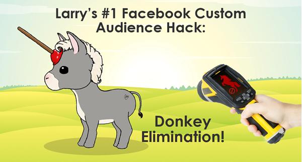 facebook audience strategies