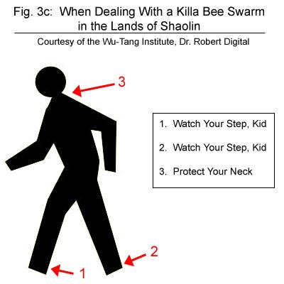 Facebook Lead Ads Wu Tang safety diagram killa bee swarm in the lands of Shaolin