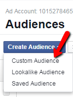 Facebook remarketing screenshot of custom audience option