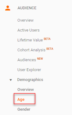 google analytics demographic information