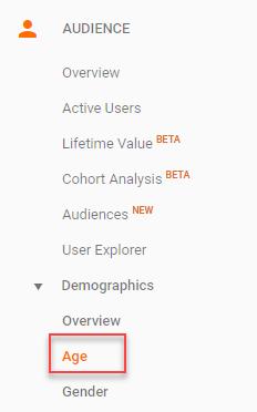 google analytics demographic information