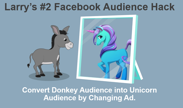 analyzing facebook audience performance