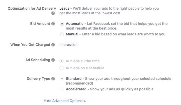 instagram advertising bid options