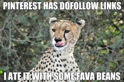 Pinterest cheetah