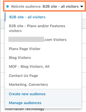 Website demographics linkedin audience filtering