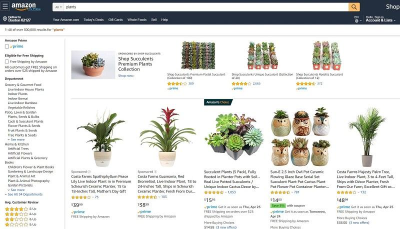 Sponsored Brands on Amazon example