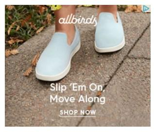 banner ad example from Allbirds