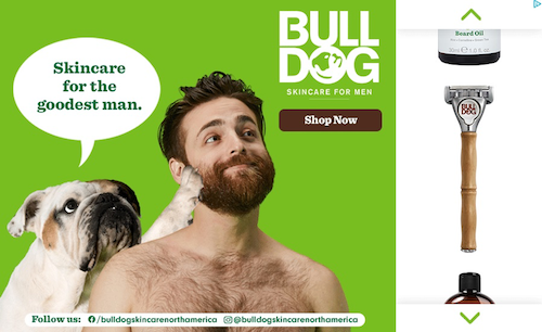 best display ads of 2020-bulldog example