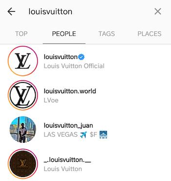 best instagram bios louis vuitton1
