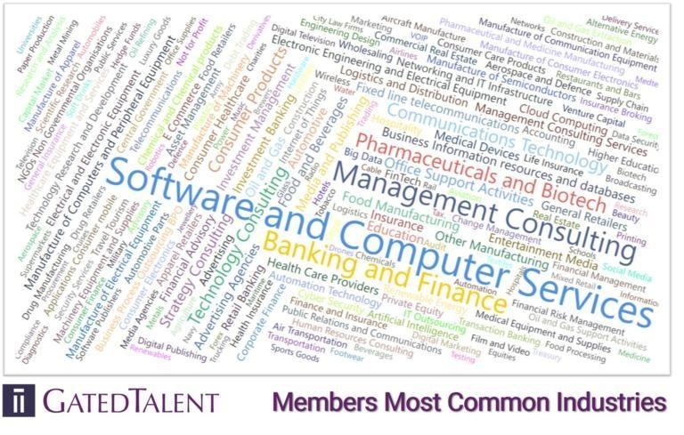 word cloud of common industries working with GatedTalent