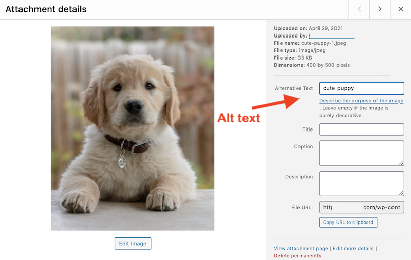 email-accessibility-alt-text